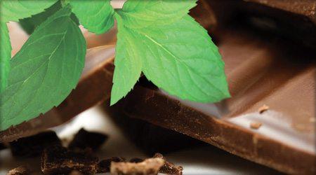 Mint Chocolate Crisp Gelato