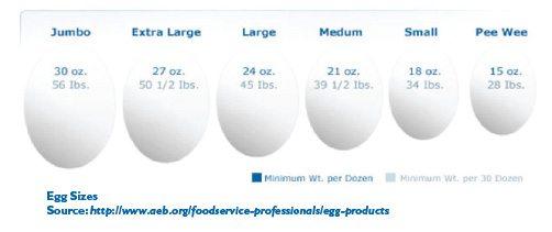 Egg Size