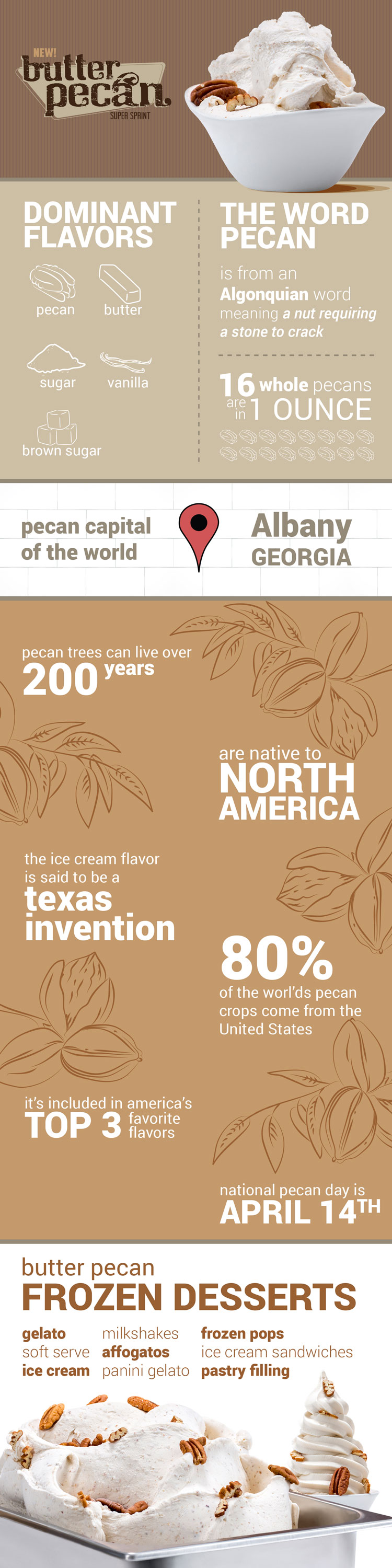 butter-pecan-infographic